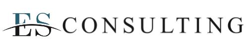 ES Consulting GmbH